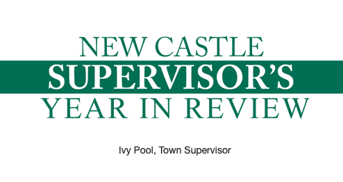 Supervisor's Year in Review 2020